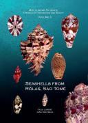 Seashells from Rólas, Sao Tomé