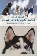 Aslak, das Hundemodel